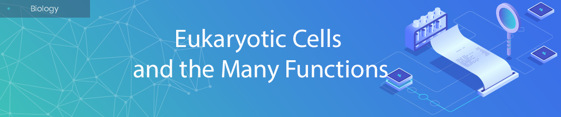 Eukaryotic Cells and the Many Functions
