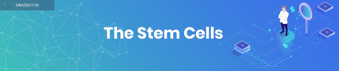 The Stem Cells